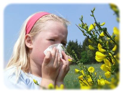 allergia_asztma_bemer_eleteroforras_centrum3